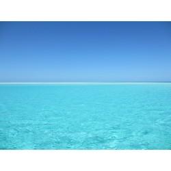 Ocean 15