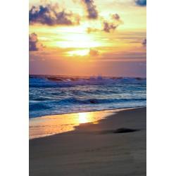 Gulf Shores 1