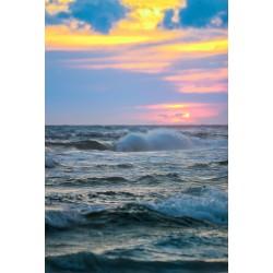 Gulf Shores 2