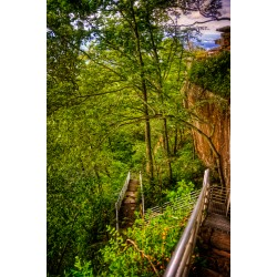 Lookout Trail Stairs