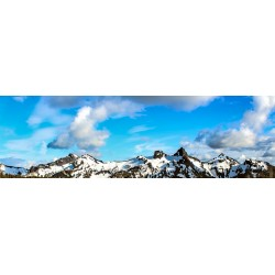 Mountain View 47